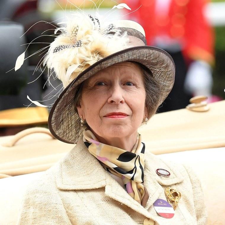 Princess Anne's Charity Queen Elizabeth II's Daughter