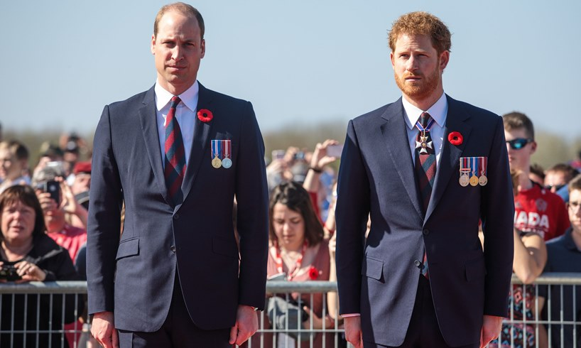 Prince William Snubbed Prince Harry During Their Last Meeting For This Reason