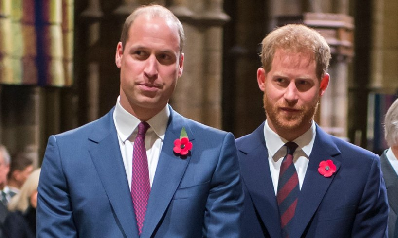 Prince William Harry Title Removed Election
