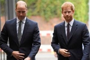 Prince William Harry Feud Queen Elizabeth Sussex Royal Statement