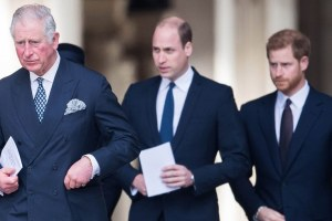 Prince Charles William Harry Parenting New Podcast Interview
