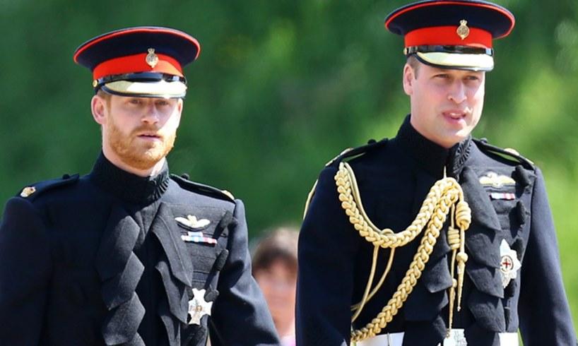 Prince Harry William Meghan Markle Queen Elizabeth Princess Diana Tribute Oprah Winfrey Interview Aftermath