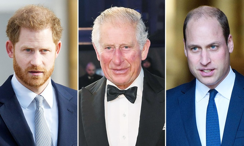 Prince Harry Charles William Grandchildren Privacy