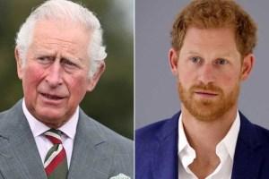 Prince Charles Harry Meghan Markle Meeting Skipped