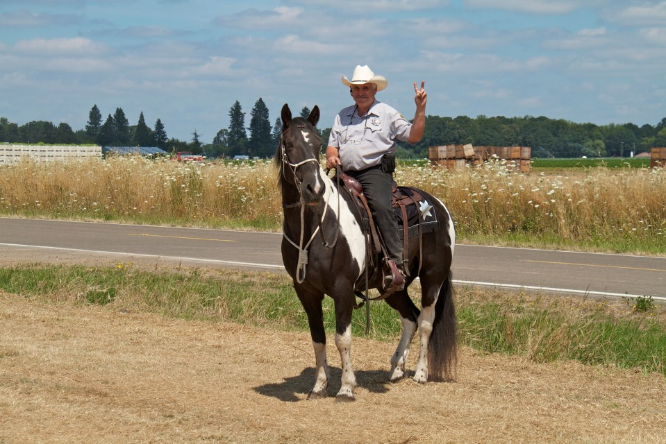 Mounted Sheriff