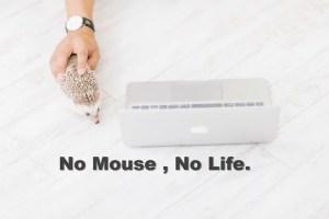 マウスのデメリット