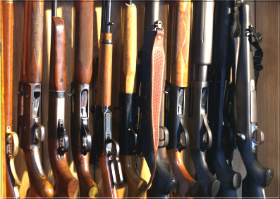 Many Guns for Sale