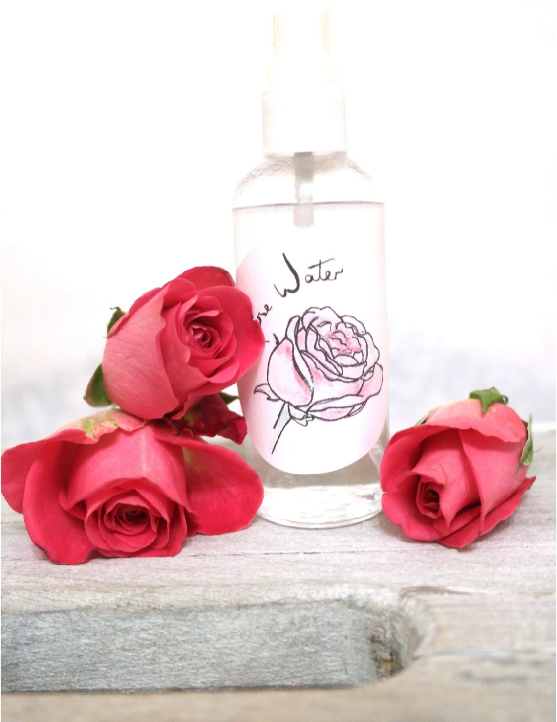 How To Make Your Own Rose Water To Refresh Your Skin- httpusefuldiyprojects.com(6)