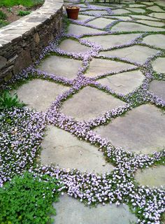 37  Beauteous and Alluring Garden Paths and Walkways For Your Little Drop of Heaven usefuldiyprojects (13)