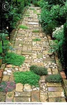 37  Beauteous and Alluring Garden Paths and Walkways For Your Little Drop of Heaven usefuldiyprojects (20)