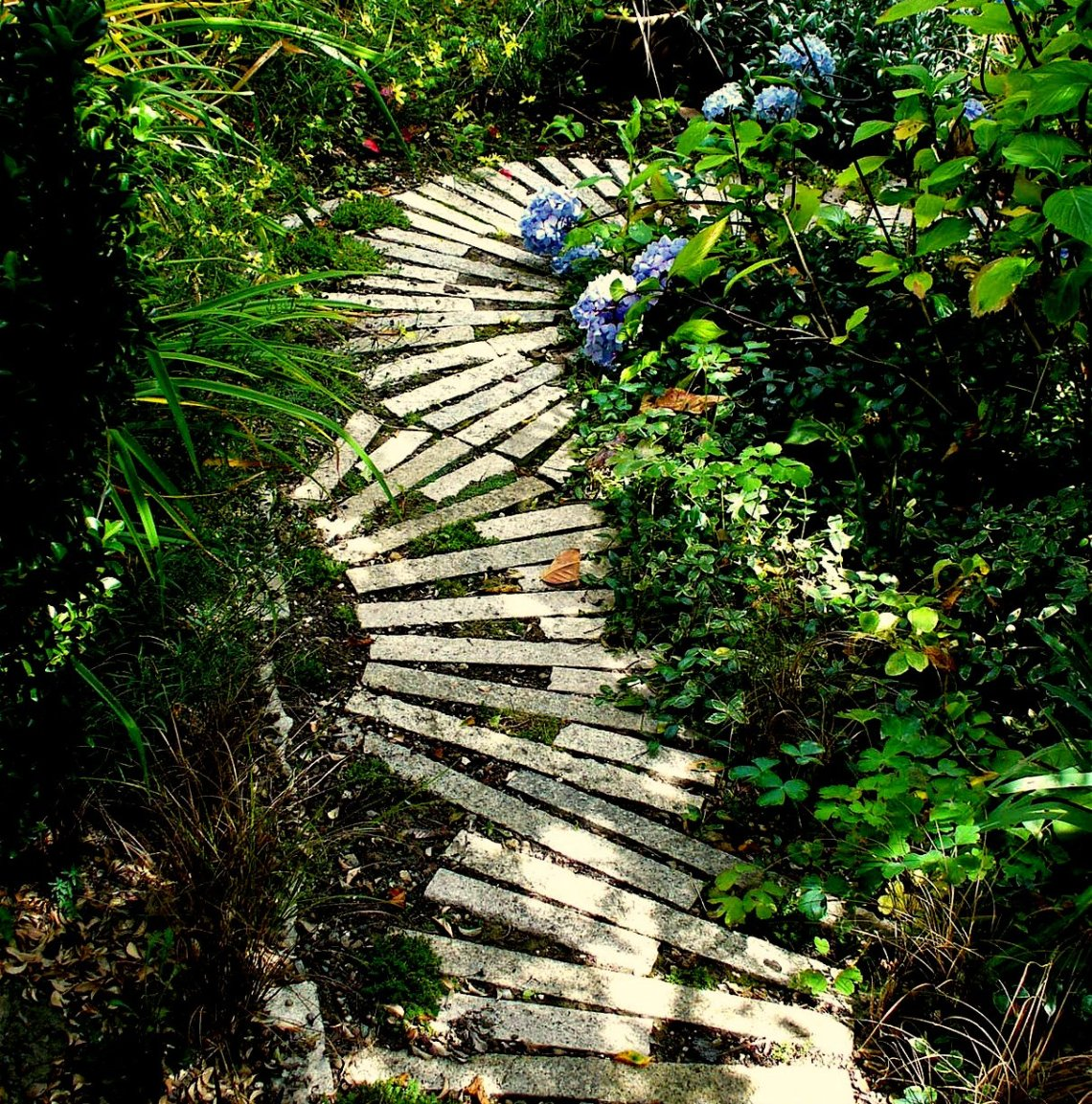 up the garden path...
