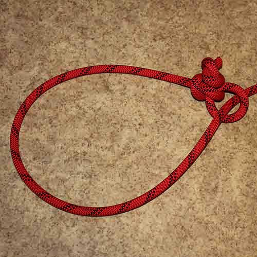 Honda knot (Lariat)