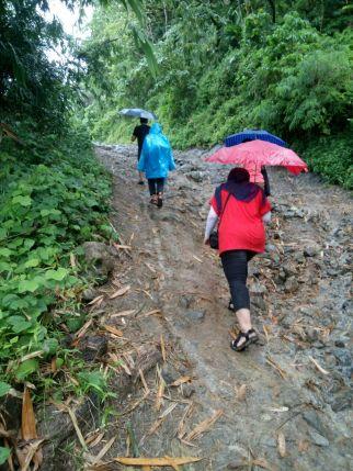 Perjuangan jalan kaki menuju Puncak Darma.