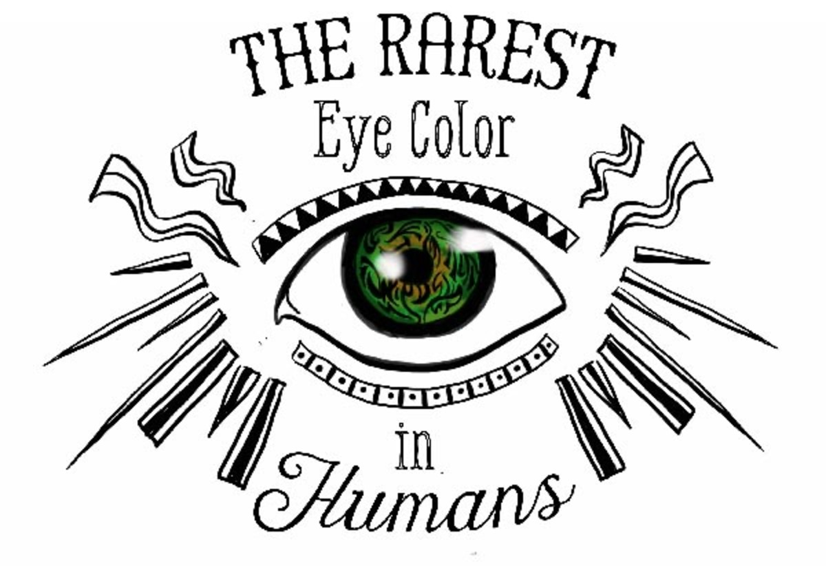 The Human Eye Color Chart