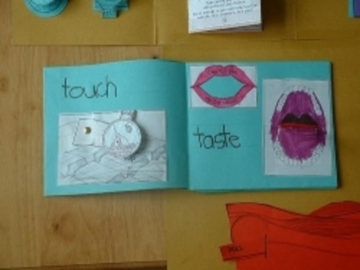 How To Teach The 5 Senses To Kids