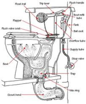 How does a Toilet Work  Toilet Basics 101 | HubPages