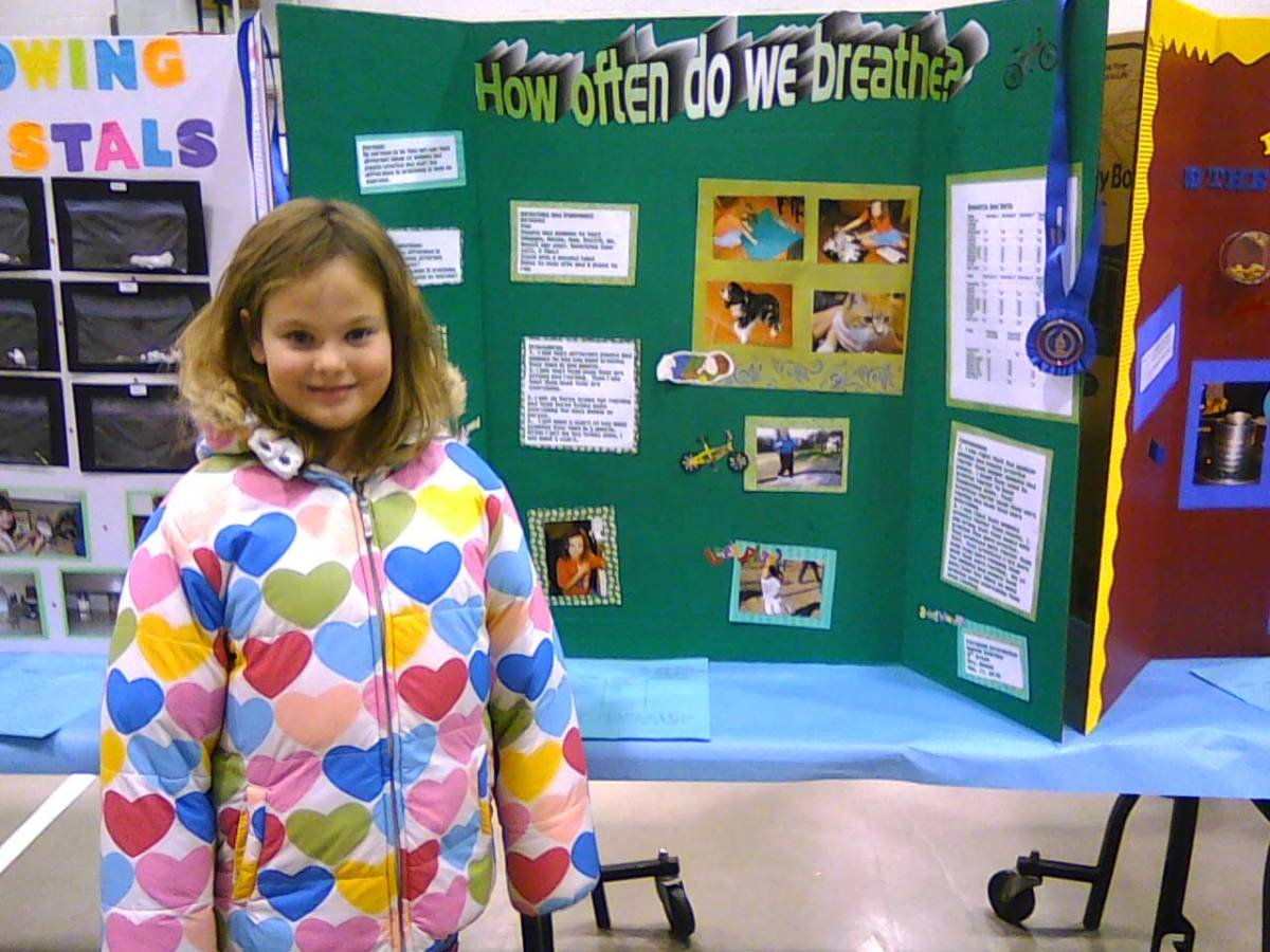Easy Animal Science Fair Project For Elementary Kids