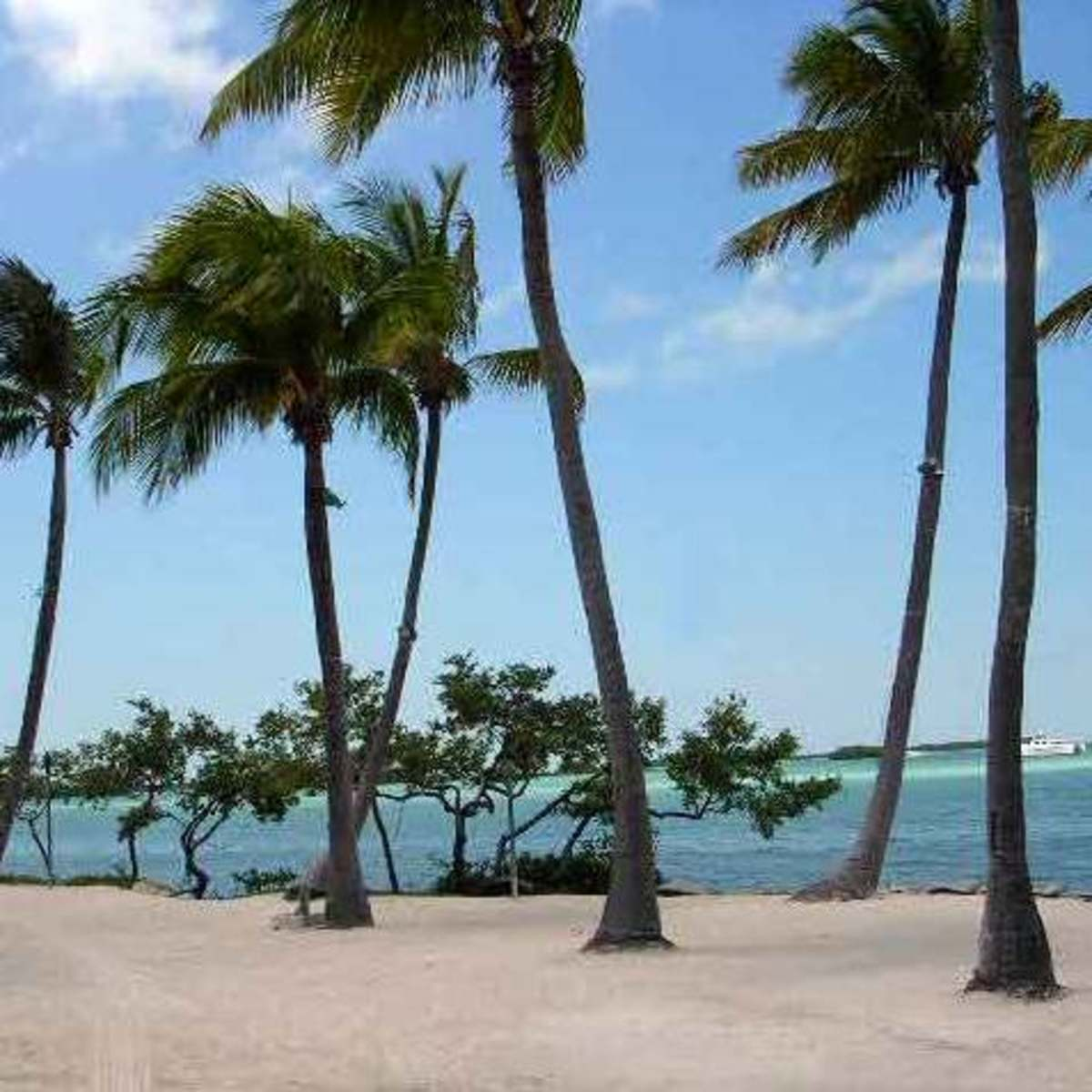 Florida For Teachers And Travelers