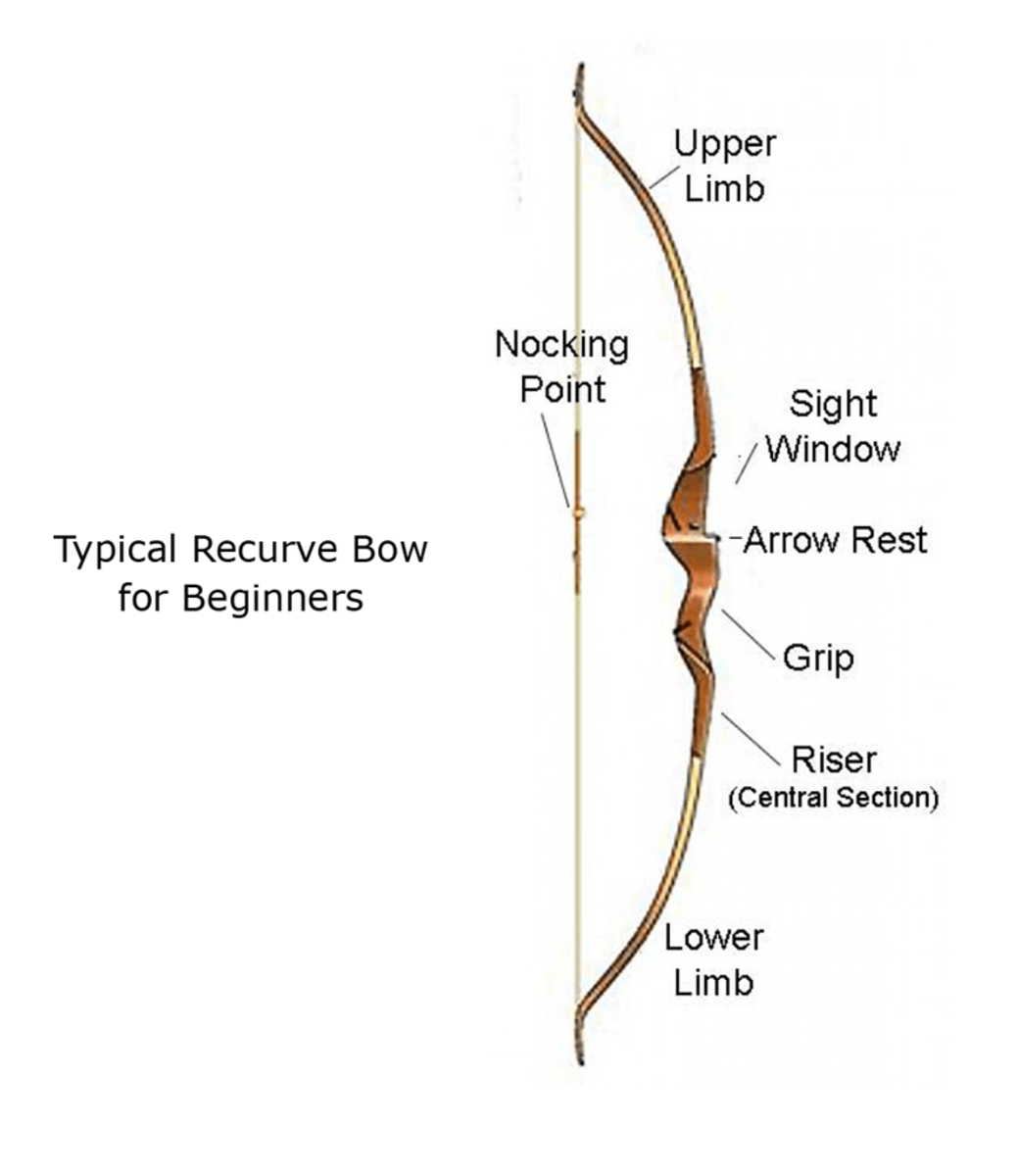 The Best Beginner Bows For Target Archery