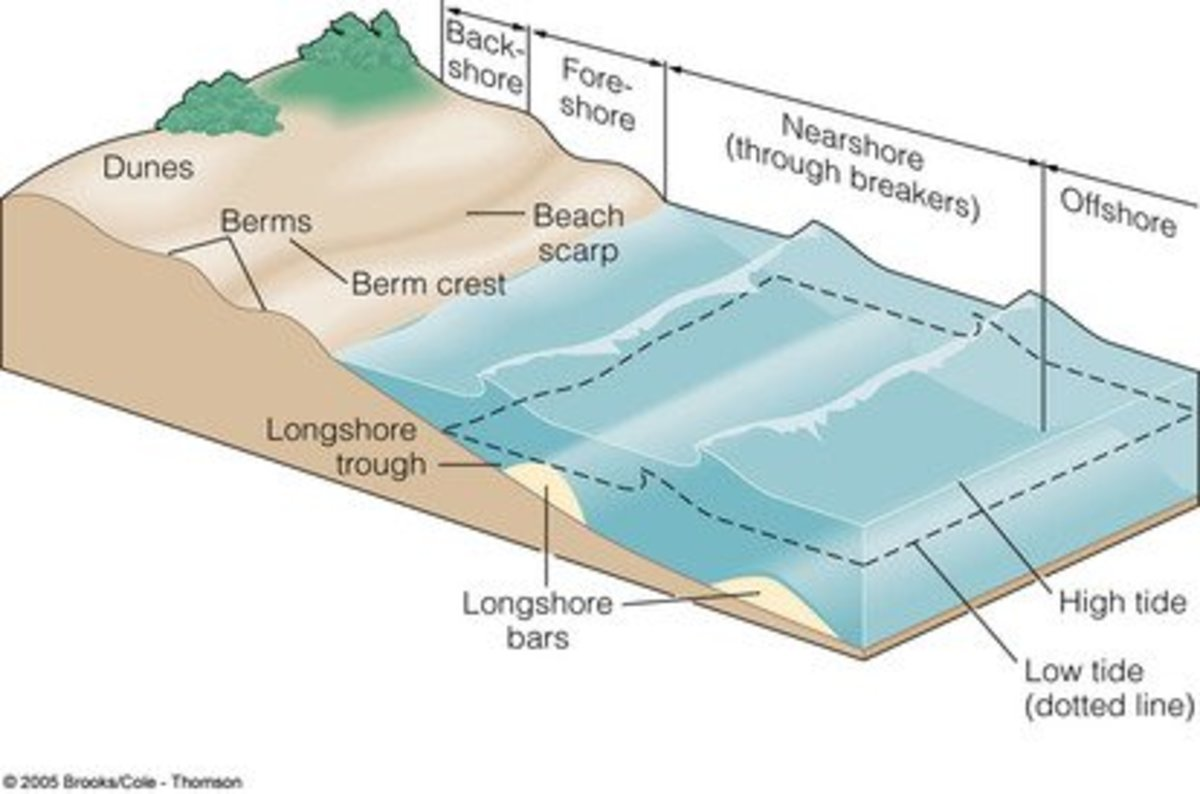 Geographical Processes That Form And Transform Coastal