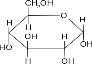 What are Biological Molecules?   HubPages