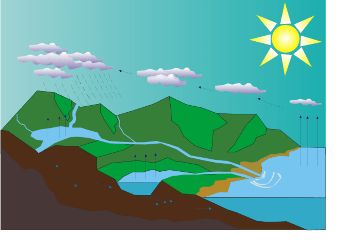 The Water Cycle Free Printable Worksheets And Teaching