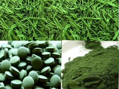 Spirulina Helps Kids To Get Nutritious Food | Telugu Kids News
