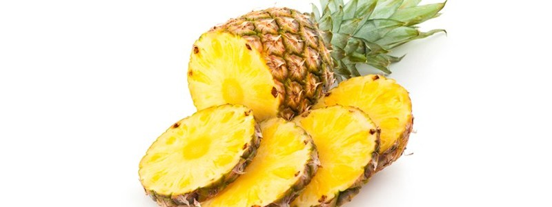 pineaple - The Pineapple Fund – Bitcoin For Charity