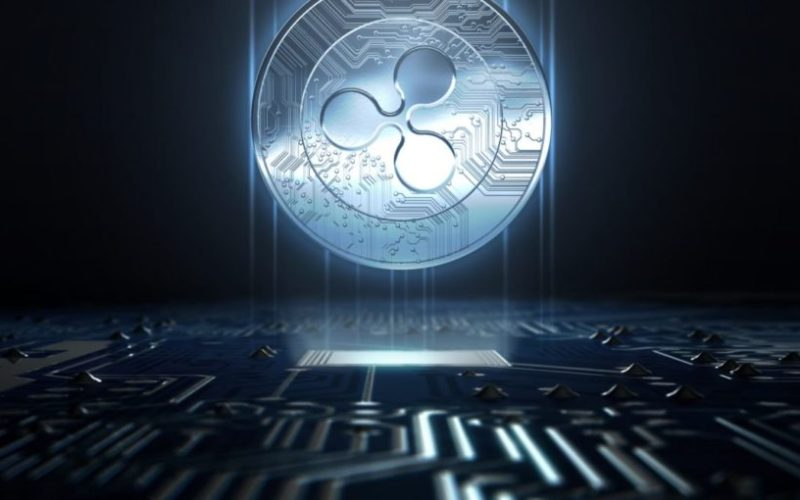 ripple8 - Ripple Receives Support from a $100 Million Hedge Fund