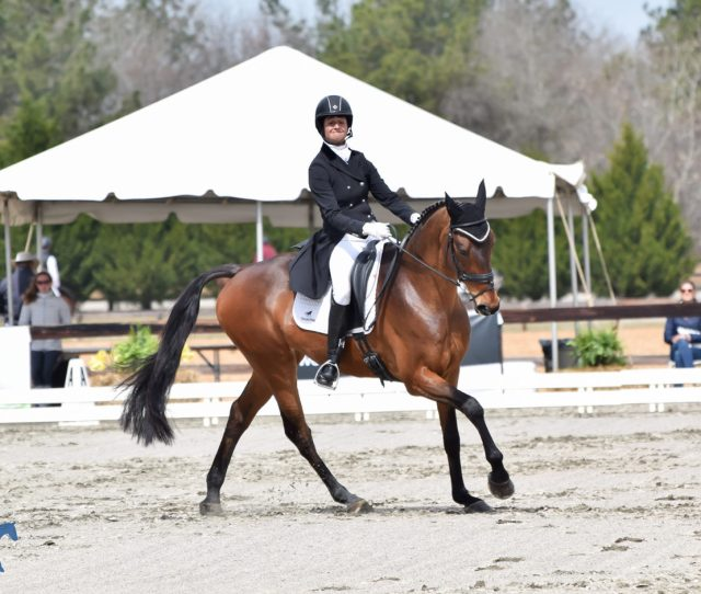 Jennie Brannigan Steals The Show On Day One Of The Adequan Usea Gold Cup Qualifier At Carolina International