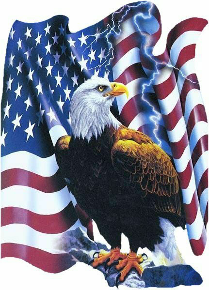 Patriotic_Eagle_American_Flag-09LG