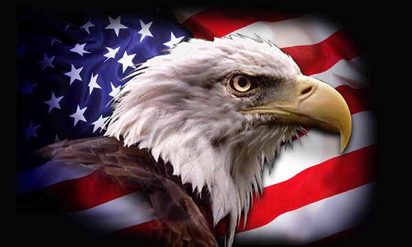 american-eagle-flag-3x5-17