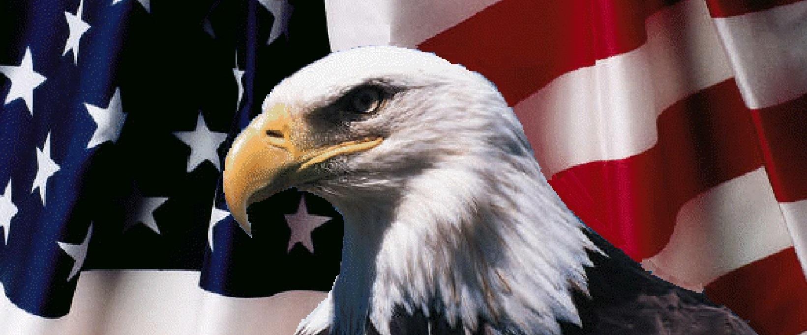 american-flag-and-eagle-2a