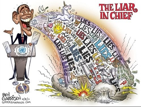 6bcfe90e9e8b33c005c49c8dea0540de--obama-lies-barack-obama