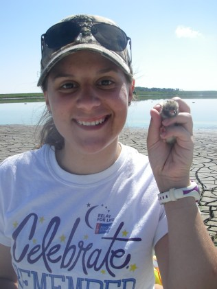 Me holding a least tern chick!
