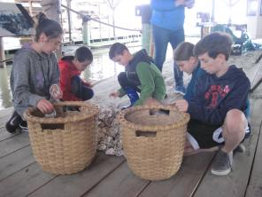 Harvesting local oyster shells