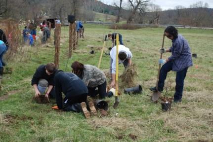 SAMKIL Planting HVRHS Many Planters