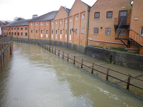 River Wey on the rise