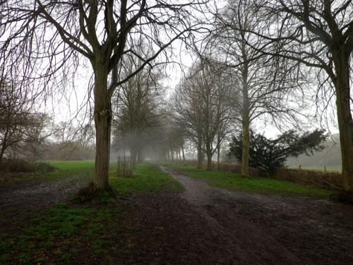 The Avenue of Trees in the rain - yuck!
