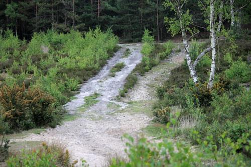 Vacant path