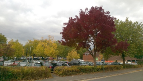 Autumn in the Waitrose car park