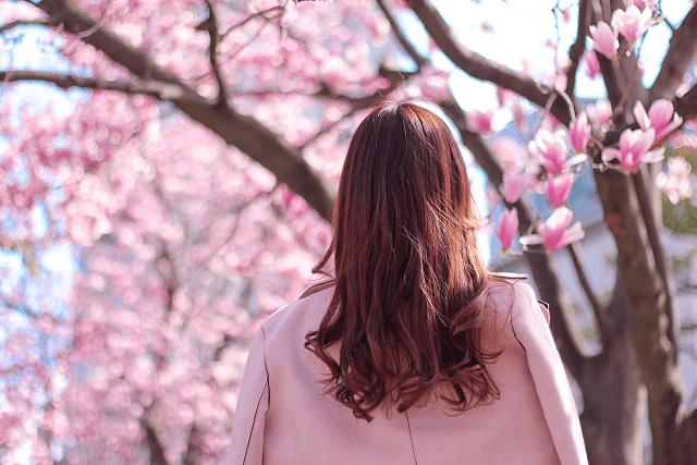 お花見デートって何する?女子からの答えと使えそうな東京の桜の名所