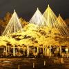 金沢兼六園のライトアップの冬の場所や営業時間は何時から何時まで?