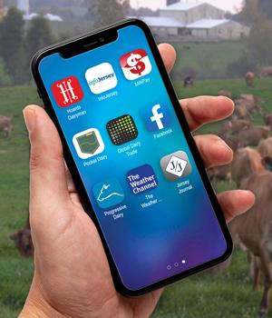 Favorite-Jersey-Apps