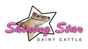 ShiningStar_logo