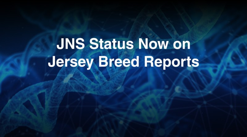 JNS Status for Registered Jerseys Now Available on Breed Reports