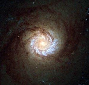 Tämä on M61 eli kierteisgalaksi NGC 4303. Kuvaa on himmennetty, jotta kirkas keskus näkyisi yksityiskohtaisesti. Keskuksessa on massiivinen musta aukko, jonka ympäri galaksi pyörii. Kuva: ESA Hubble.