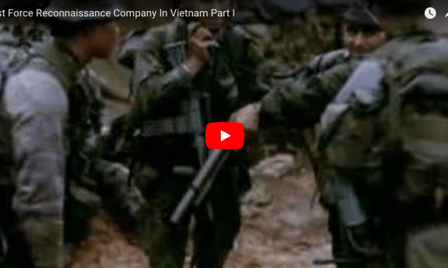 1st Force Reconnaissance Company In Vietnam