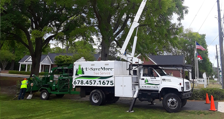 U-Savemore-tree-service-snellville-tree-removal_13