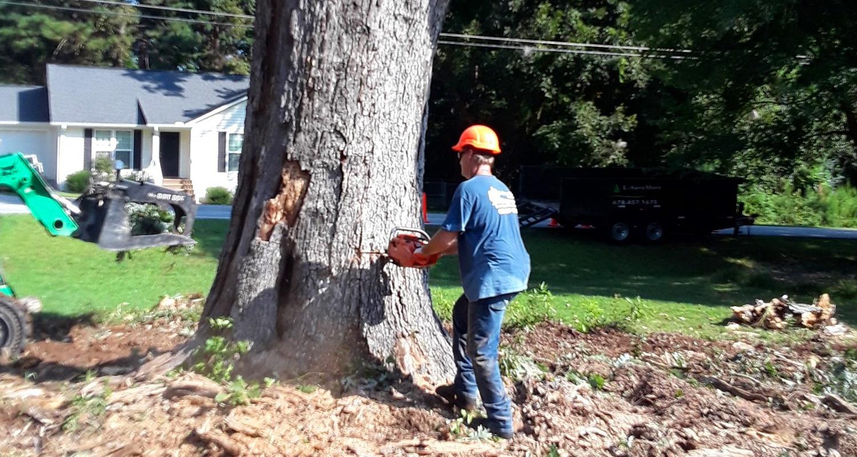 U-Savemore-tree-service-snellville-tree-removal_15